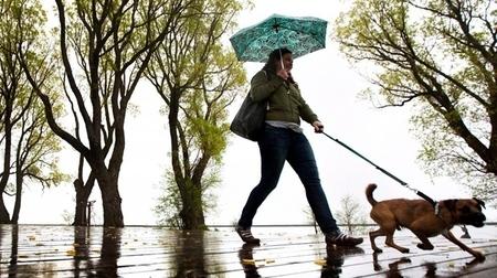 サンクスギビング 雨.jpg